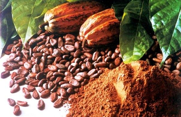 маска из какао бобов