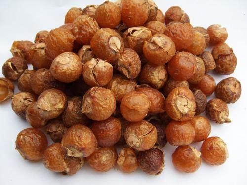 что такое мыльные орехи