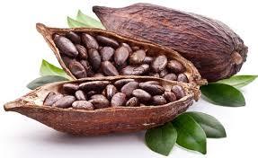 Маска для жирных волос с какао