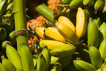 Photo of Маски для обличчя з банана