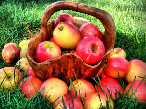 Photo of Маски з яблук для особи