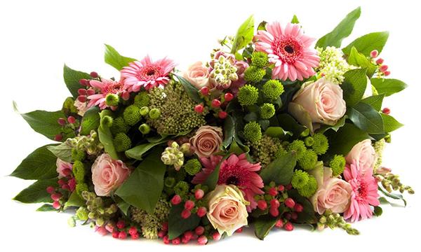 Photo of Як вибрати квіти, щоб завтра вони не перетворилися на віник