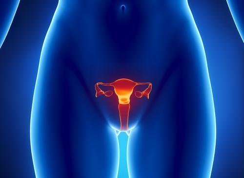 Эрозия шейки матки при беременности - симптомы, диагностика и лечение