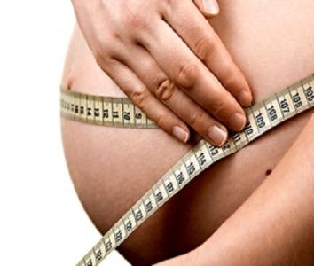 Первая половина беременности: как развивается плод?