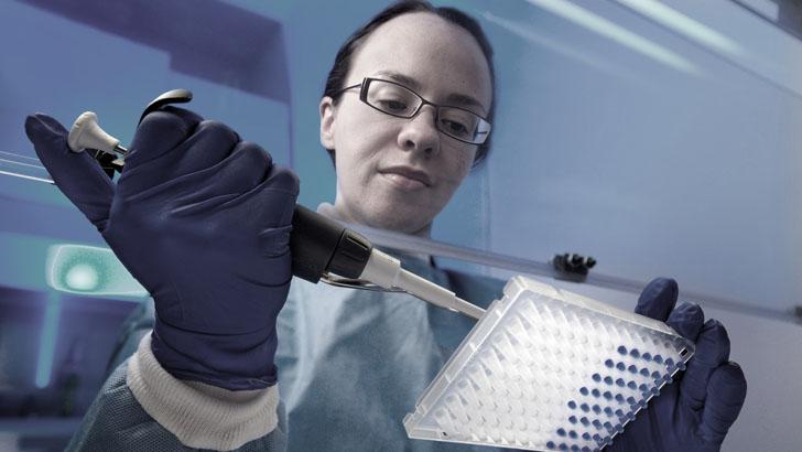 Лабораторное выявление наличия вируса герпеса