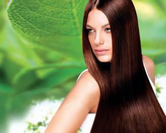 Эфирное масло мяты для роста волос