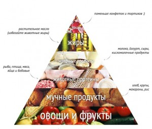 Пирамида питания для зачатия