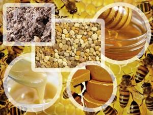 Мед, молочко, прополис, пыльца, воск