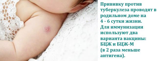 profilaktika-tuberkuleza-privivka-bczh
